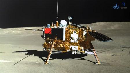 Китайский аппарат «Чанъэ-4» вырастил первые побеги хлопчатника на Луне