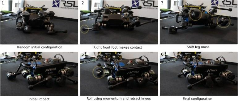 Четвероногий робот ANYmal научился вставать с колен