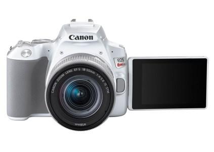 Canon выпустила бюджетную зеркальную камеру EOS Rebel SL3 с поддержкой 4K стоимостью $600
