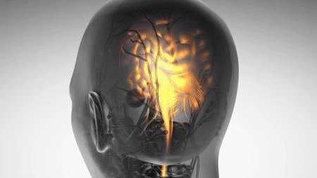 Американские ученые разработали прорывную технологию неинвазивной эндоскопии