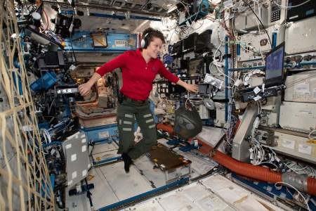 «Первое преступление в космосе». Астронавта NASA Энн Макклейн подозревают в незаконной слежке за бывшей женой с борта МКС