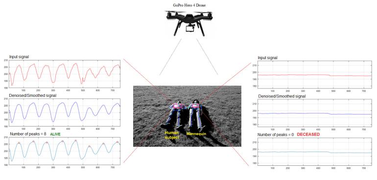 Австралийские исследователи представили ПО для дронов, способное отличать на видео живых людей от мертвых