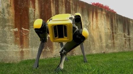 Полиция Массачусетса тайком использовала робота-собаку Spot от Boston Dynamics