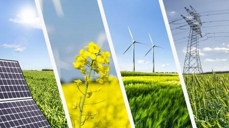 $4,8 млрд — столько было инвестировано в возобновляемую энергетику Украины за последние пять лет