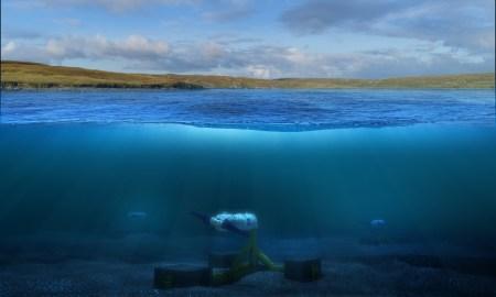 У новошотландских берегов построят приливную электростанцию номинальной мощностью 1,5 МВт