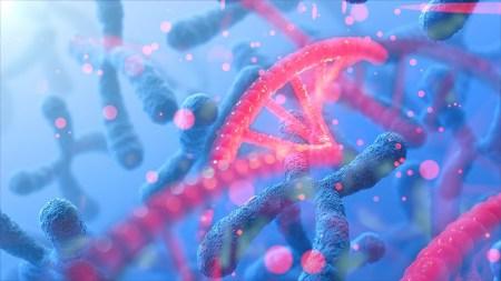 Генетики составили самый детальный каталог онкологических заболеваний. Это должно повысить эффективность ранней диагностики