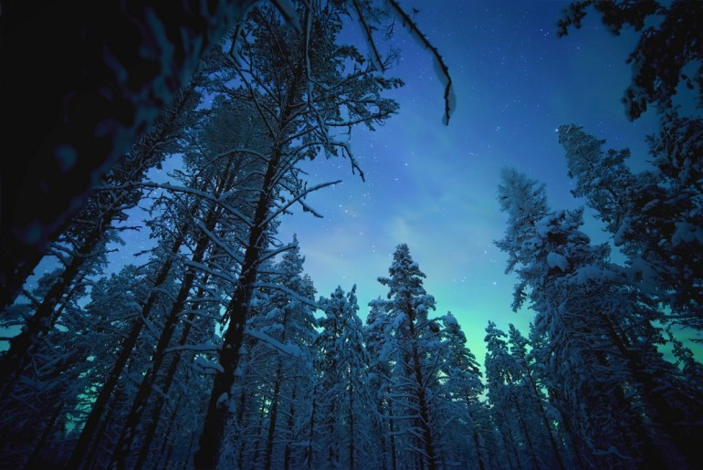 Рецензия на документальный сериал Earth at Night in Color / «Ночная земля в цвете»