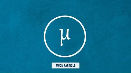 Результаты экспериментов с мюонами не вписываются в существующие законы физики и могут свидетельствовать о неизвестных частицах или силах