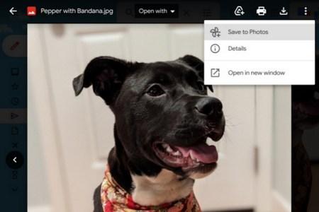 Google добавила в Gmail кнопку для быстрого сохранения фото в Google Photos