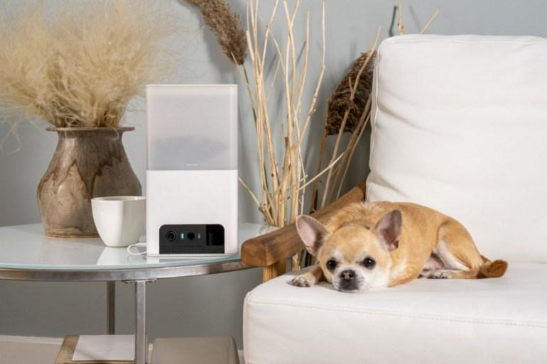 Petcube представил новую умную камеру для животных Petcube Bites 2 Lite со встроенной кормушкой по цене $125
