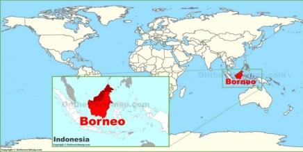 borneo(2)
