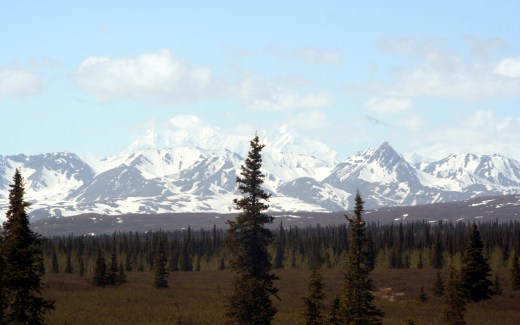 Alaska: Denali National Park