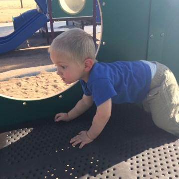 Exploring a park