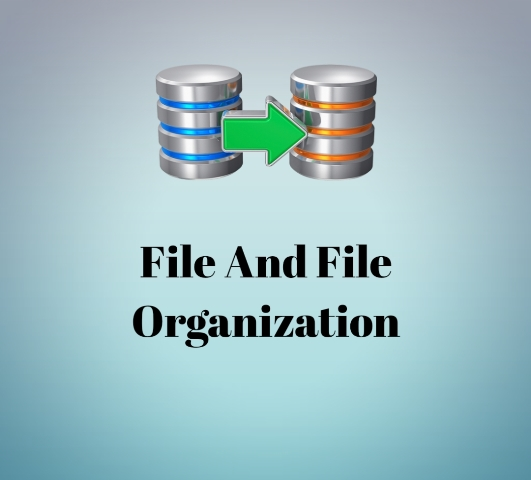 Introduction of file and file types or organization of file