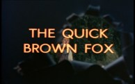 The Quick Brown Fox Title Shot