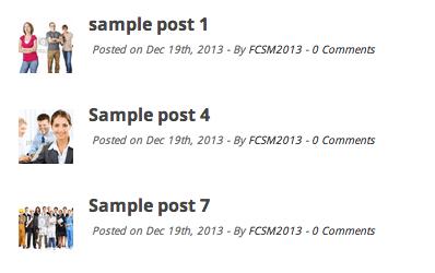 show-categories-of-post-wordpress