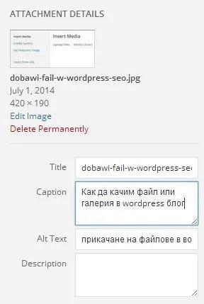 Как да опише параметрите на файла в wordpress за да зарадваме SEO