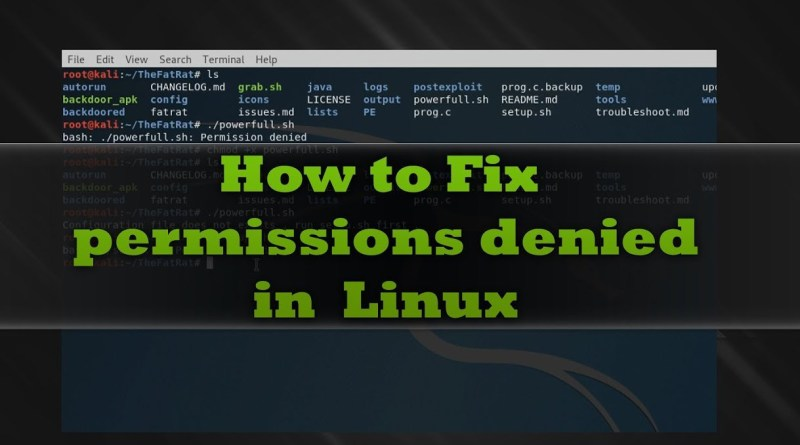 permission denied in ubuntu