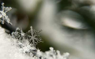 Why QR Codes are like Snowflakes