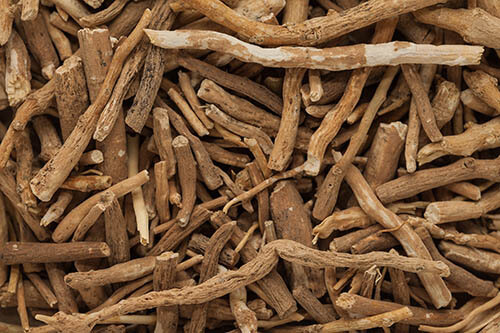 Ashwagandha (Withania somnifera) roots and testosterone