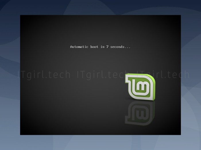 Booting the live Linux USB version of Linux Mint.