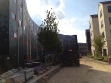 Collegetown_Terrace_81004