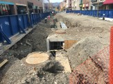Commons-Rebuild-Ithaca-0413141