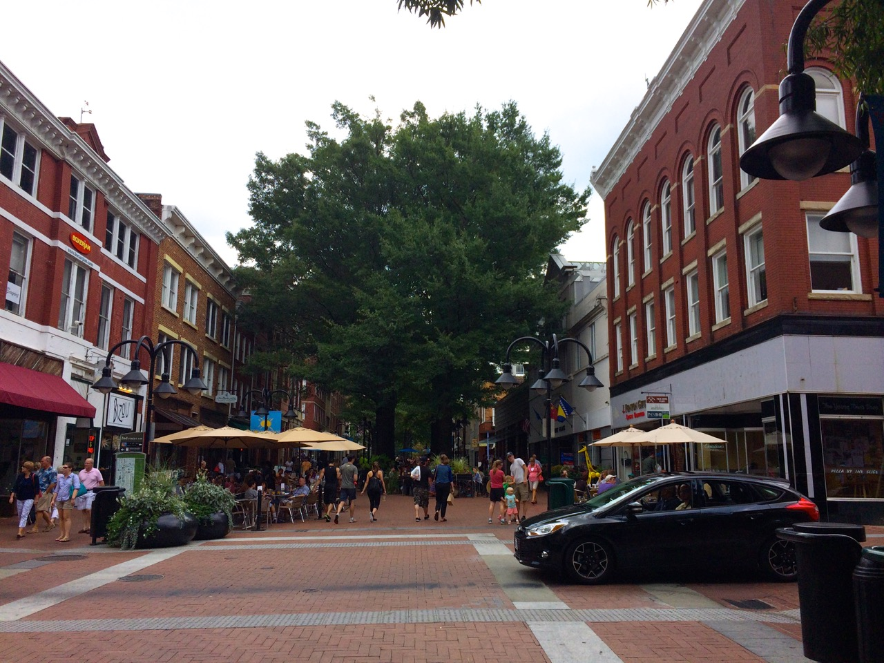 Charlottesville-VA-downtown-IthacaBuilds-08091401