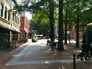 Charlottesville-VA-downtown-IthacaBuilds-08091451
