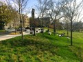 Sesquicentennial-Grove-Cornell-10-17-1401