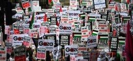 فعاليات أوروبية للتضامن مع غزة اليوم