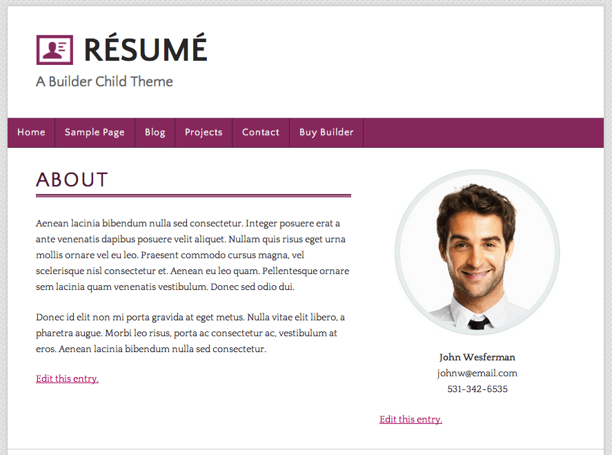 builder child theme résumé a great example of a website