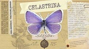 Odell Celastrina
