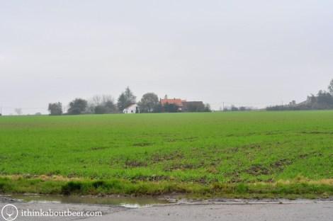 West Flemish Farmland
