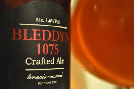 The Celt Experience Bleddyn 1075