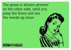 grass weeds