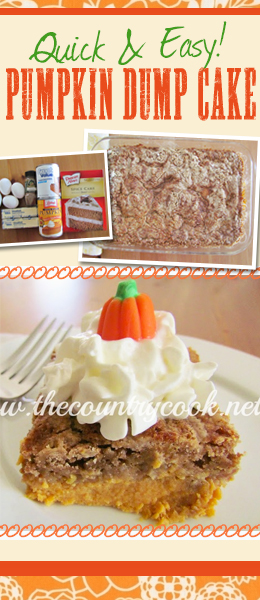 This Pumpkin Pie Dump Cake is AWESOME! SImple ingredients, and super easy to make in true dump cake fashion!