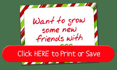 55+ New Elf on the Shelf Ideas! Fun, Creative & EASY ideas for your Elf on the Shelf!