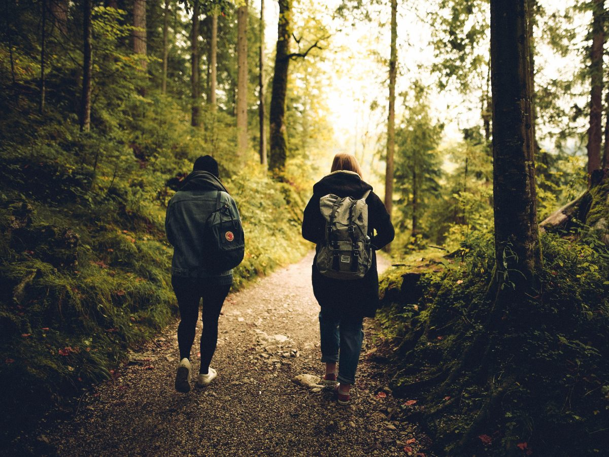 two people walking in a forest