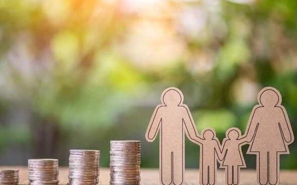 """7月起,有孩子的家庭可领取""""临时津贴"""" 生活百科 第2张"""