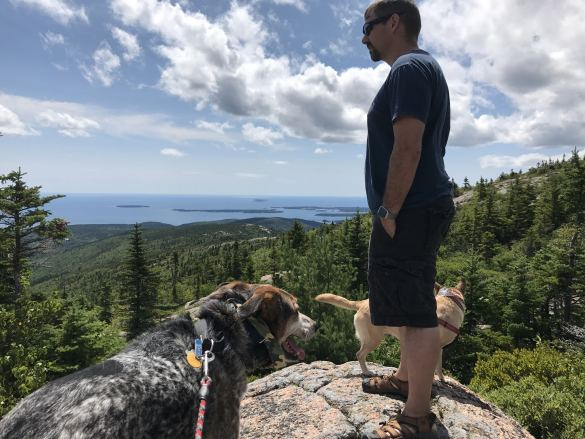 Dog friendly - At the top of Cadillac Mountain, Acadia National Park