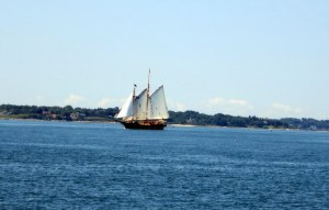 The Whale Watcher Sails in the Sound