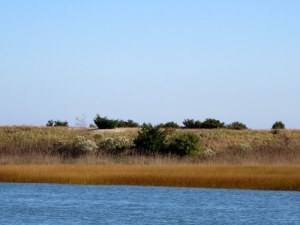 Shoreline - ICW - South of Wrightsville Beach