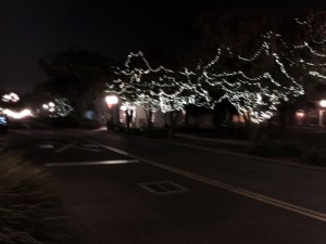 Fernandina Beach - Christmas Tree