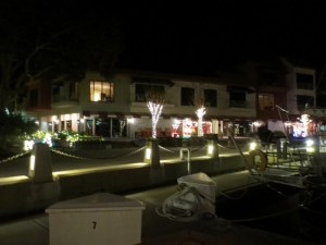 Christmas Lights - Hilton Head