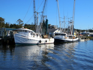 Shrimp Boats Everywhere