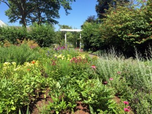 Griswold Gardens 2