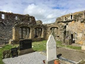 Timoleague Abbey cloister