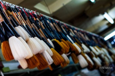 Lots of painting brushes, different sizes and colors