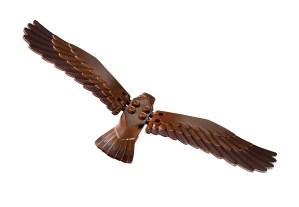 10237_BackinsetA_001_Eagle